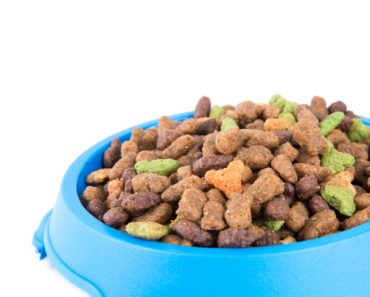 The Fabulously Fed Feline: Four of the Most Innovative Cat Food Dishes Around